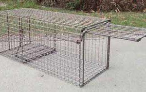 Live Cage Traps